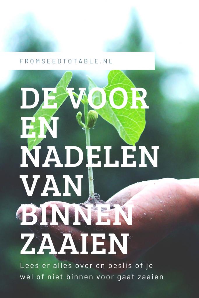 moestuin moestuintips moestuin weetjes makkelijke moestuin beginnen met een moestuin zaaien de voor en nadelen van binnen zaaien fromseedtotable.nl