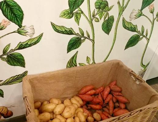 Hotspot in Breda: Heerlijk eten bij de Jongens van Zand en Klei