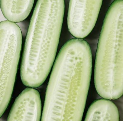 Komkommer zaaien, kweken en succesvol oogsten in je eigen moestuin