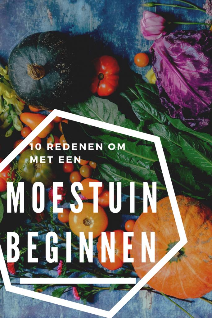 10 redenen om een moestuin te beginnen formseedtotable.nl