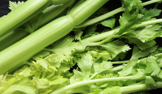 1 moestuin tips voor een top oogst bleekselderij kweken