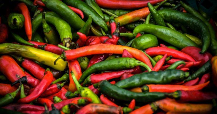Peper zaaien, kweken en succesvol oogsten in je eigen moestuin